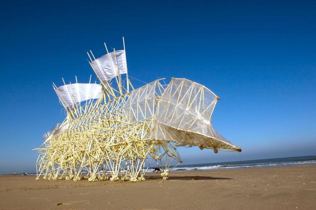 Daugiakojai paplūdimio gyventojai, valdomi vėjo