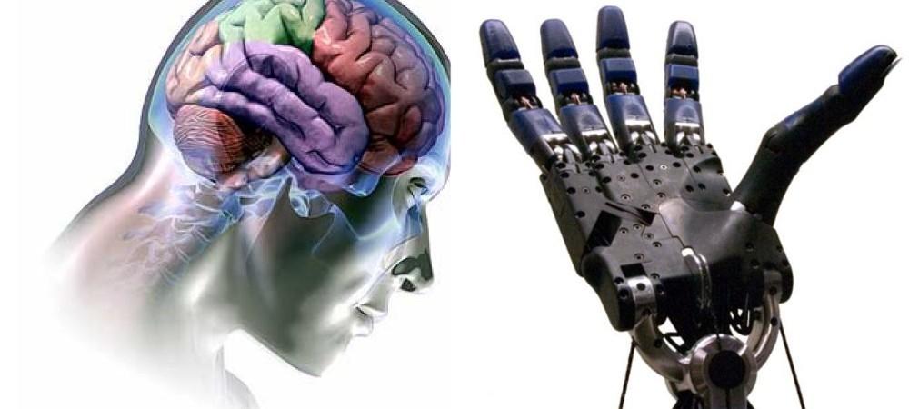 Robotas su žmogaus smegenimis 2