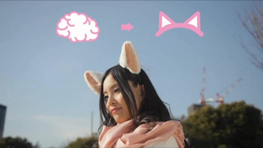 Smegenų bangomis valdomos katės ausys