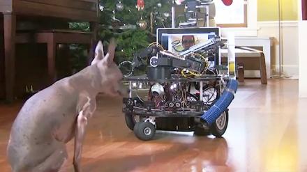 Robotas DarwinBot prižiūrės jūsų naminį augintinį