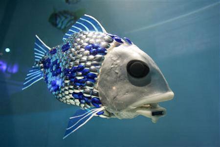 Žuvis, kuri nustato vandens taršos lygį