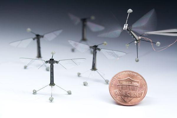 Musės dydžio radijo bangomis valdomas lėktuvėlis