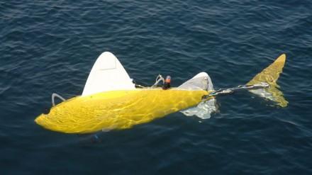 Robotizuota žuvis tirs užterštas jūros vietas