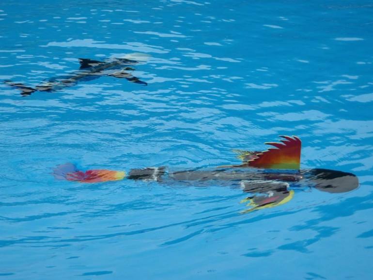 Vaikams mokytis padės robotinė žuvis naro-nanin 1