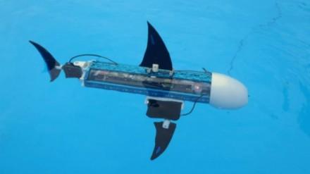 Vaikams mokytis padės robotinė žuvis naro-nanin