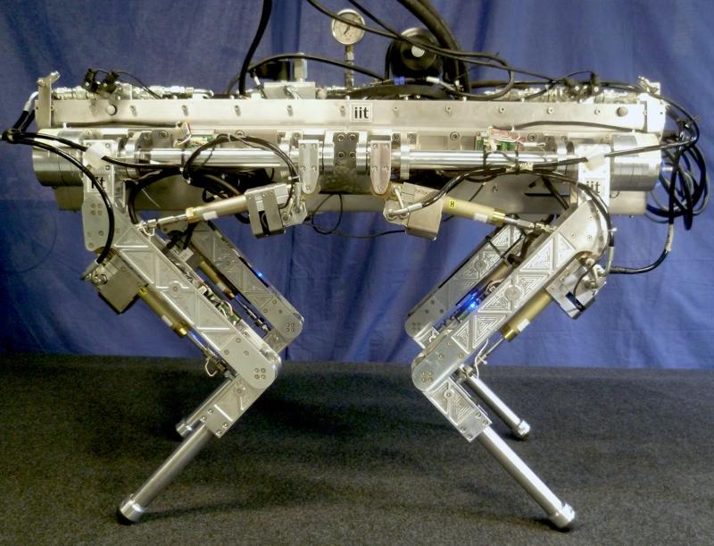 robotas HyQ
