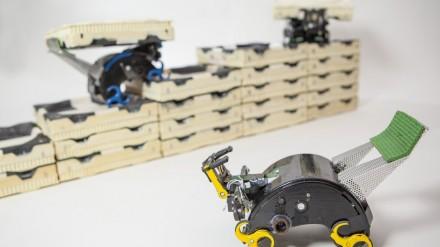 Autonomiškai dirbanti robotų statybininkų komanda
