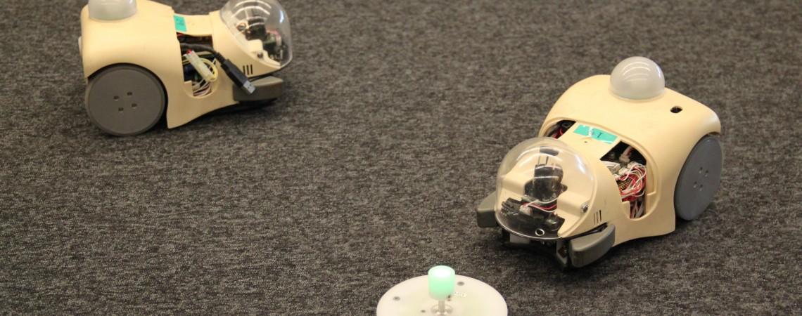 Robotų evoliucija. Robotų panaudojimas evoliucijos studijoms