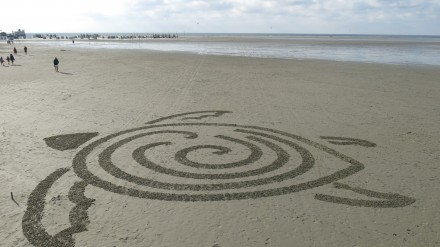 beachbot.ch nuotr.
