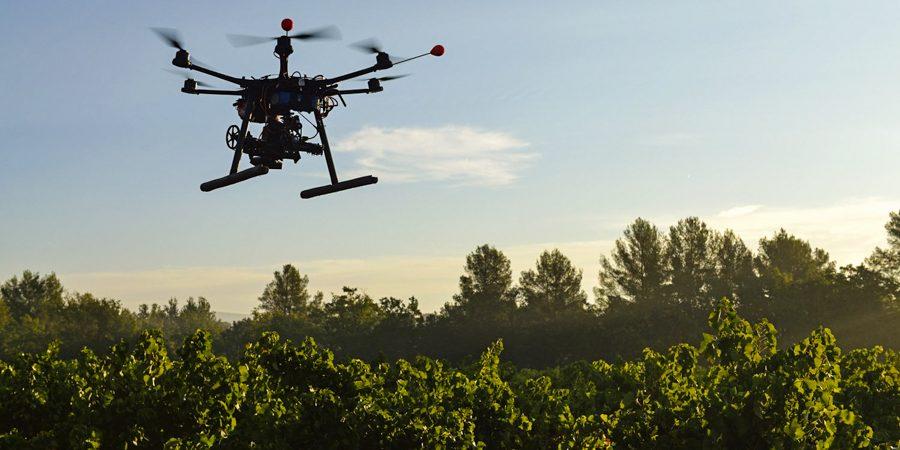 dronas