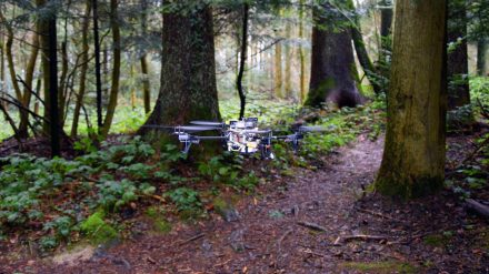dronas miske