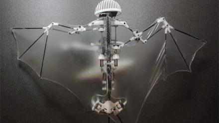 Robot Bat